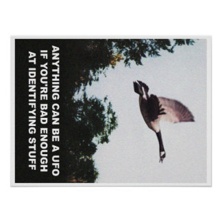 Anything can be a UFO (medium) Poster