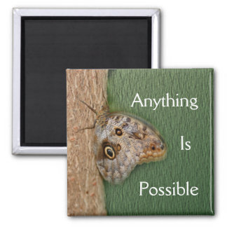 Anything Is Possible Butterfly Magnet