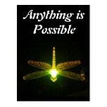 Anything is Possible Post Cards