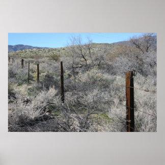 Anza Borrego Desert Fence Poster