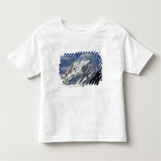 Aoraki Mount Cook, Mackenzie Country, South 2 T Shirt
