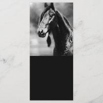 Apache horses