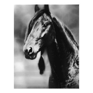 Apache horses flyer