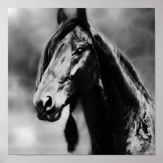 Apache horses print