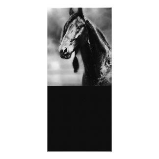 Apache horses rack card