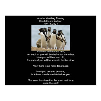 Apache Wedding Blessing Penguins Postcard