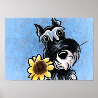 Apagado-Correo azul Art™ del girasol del Schnauzer Póster
