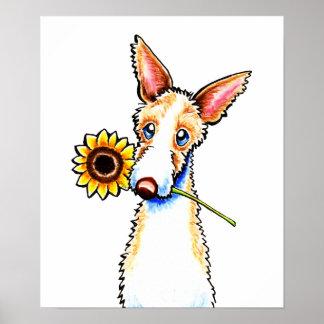 Apagado-Correo Wirehaired soleado Art™ del perro d Impresiones