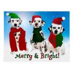 APAL - Perros del Dalmatian del navidad Postal