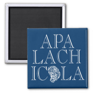 Apalachicola Florida Oyster Design Refrigerator Magnets