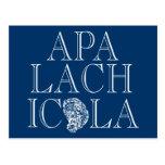 Apalachicola Florida Oyster Design Postcard