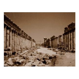 Apamea Postcard