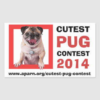 APARN Cutest Pug Contest 2014 Rectangle Stickers Rectangle Sticker