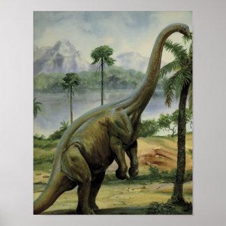 Apatosaurus (Brontosaurus) Eating Illustration Poster