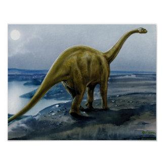 Apatosaurus (Brontosaurus) Illustration Poster