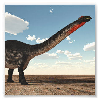 Apatosaurus dinosaur - 3D render Photo Print