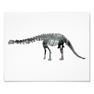 apatosaurus skeleton photo print