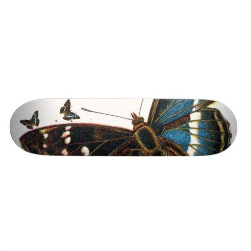 Apatura iris male, Apatura iris male, Apatura i... Skateboard