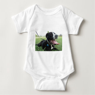 APBT American Icon & Family dog T-shirt