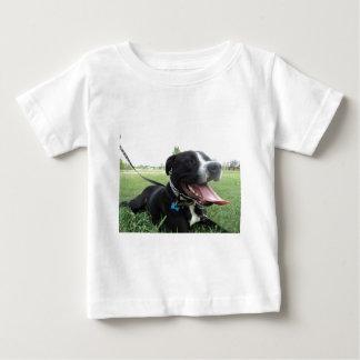 APBT American Icon & Family dog T Shirt