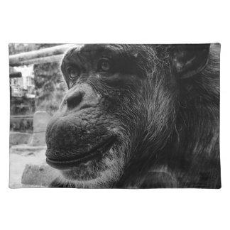 Ape Cloth Placemat