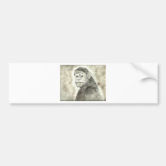Ape Drawing Design Bumper Sticker