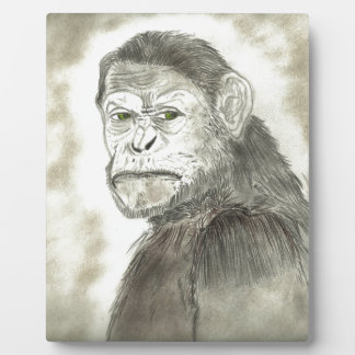 Ape Drawing Design Photo Plaques
