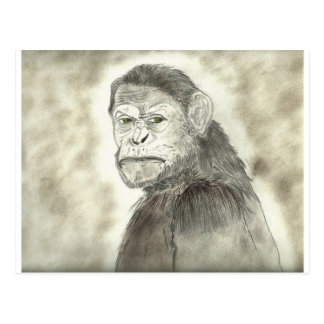 Ape Drawing Design Postcard