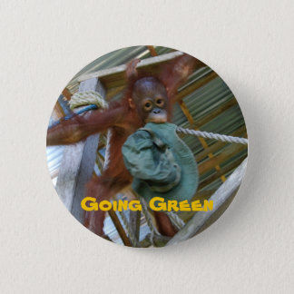 Ape for Green Pinback Button