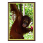 Ape for Watermelon Greeting Card