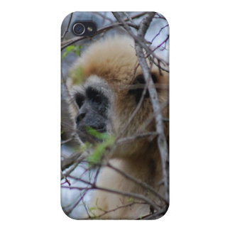 Ape Keeper of the sacred forests Cover For iPhone 4