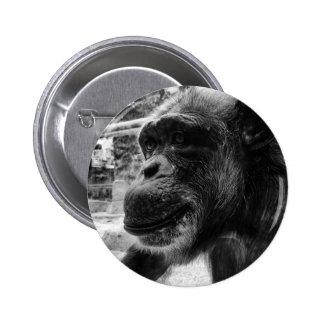 Ape Pinback Button