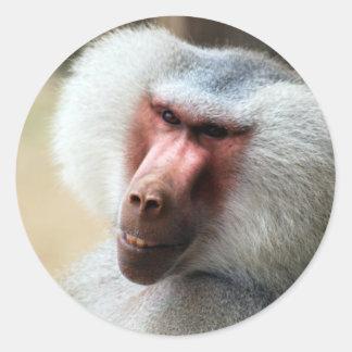 Ape saying howdy classic round sticker