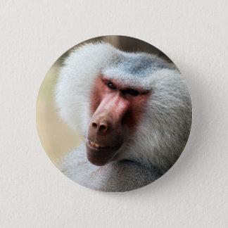Ape saying howdy pinback button