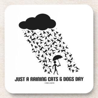 Apenas A que llueve día de los gatos y de perros Posavasos