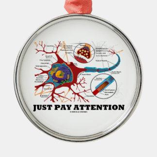 Apenas atención de la paga (neurona/sinapsis) ornato