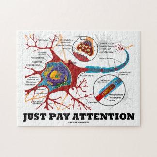 Apenas atención de la paga (neurona/sinapsis) puzzle