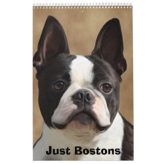 Apenas Bostons Calendario De Pared