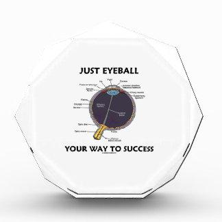 Apenas calcule visualmente su manera al éxito la
