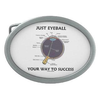 Apenas calcule visualmente su manera al éxito (la  hebillas cinturon
