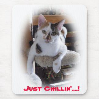 ¡Apenas Chillin'…! Alfombrilla De Ratón