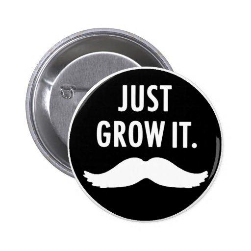 Apenas crézcalo botón del bigote pins