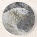 Apenas enfriándose después de oso polar de la inme posavaso para bebida