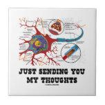Apenas enviándole mi sinapsis de la neurona de los azulejo cuadrado pequeño