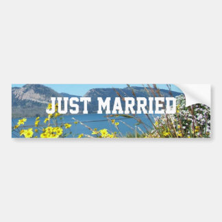 Apenas flores y lago casados, cielo azul pegatina para auto
