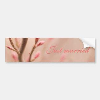 Apenas la primavera casada soña a la pegatina para etiqueta de parachoque