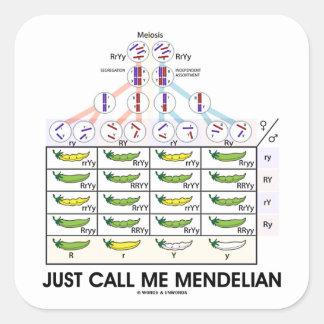 Apenas llámeme mendeliano (las genéticas cuadradas pegatina cuadrada