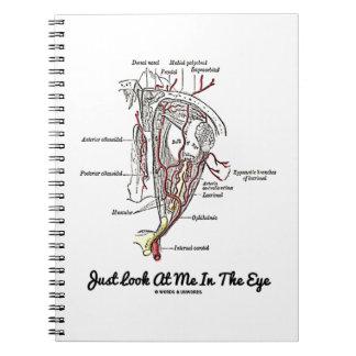 Apenas míreme en el ojo (la anatomía) cuadernos