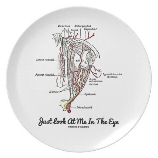 Apenas míreme en el ojo (la anatomía) plato de cena