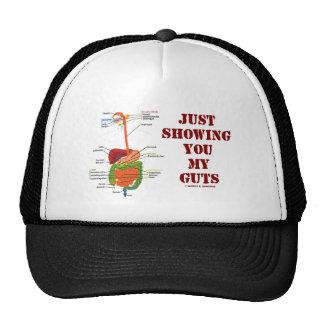 Apenas mostrándole mi tripa (humor del sistema dig gorras